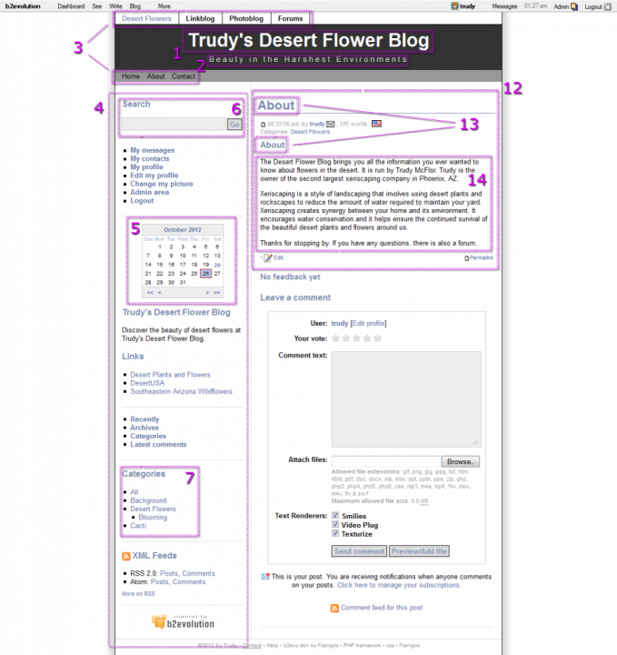 Blog Anatomy
