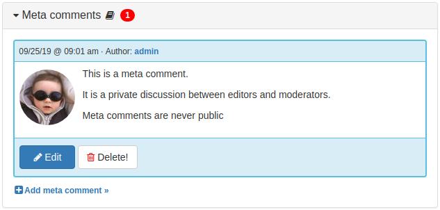 Item Meta Comments Panel